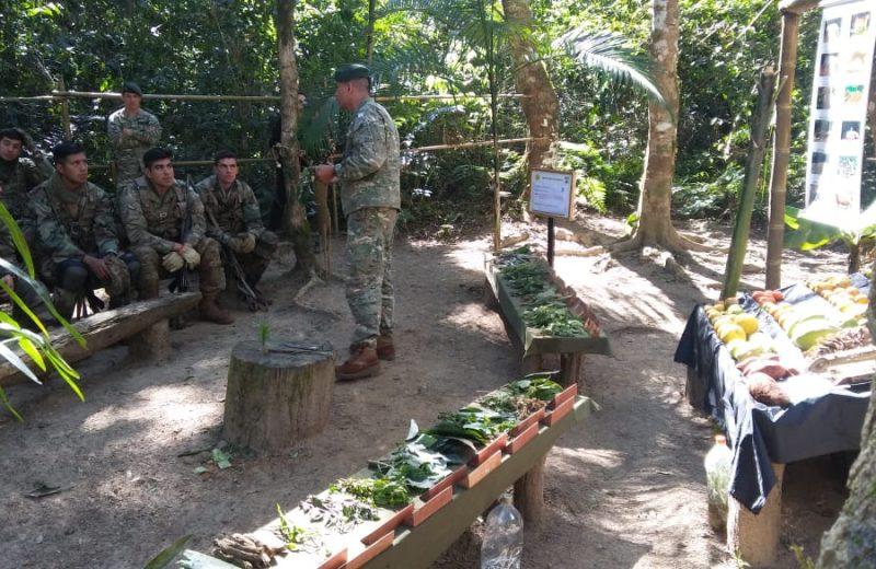Cadetes del Ejército argentino se capacitan en Iguazú