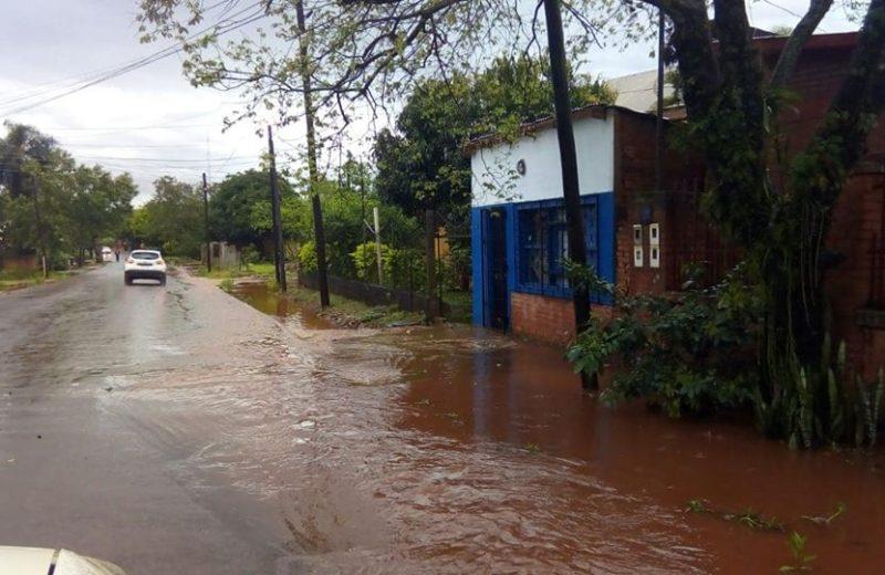 Calles anegadas, árboles y postes caídos es el saldo del último temporal