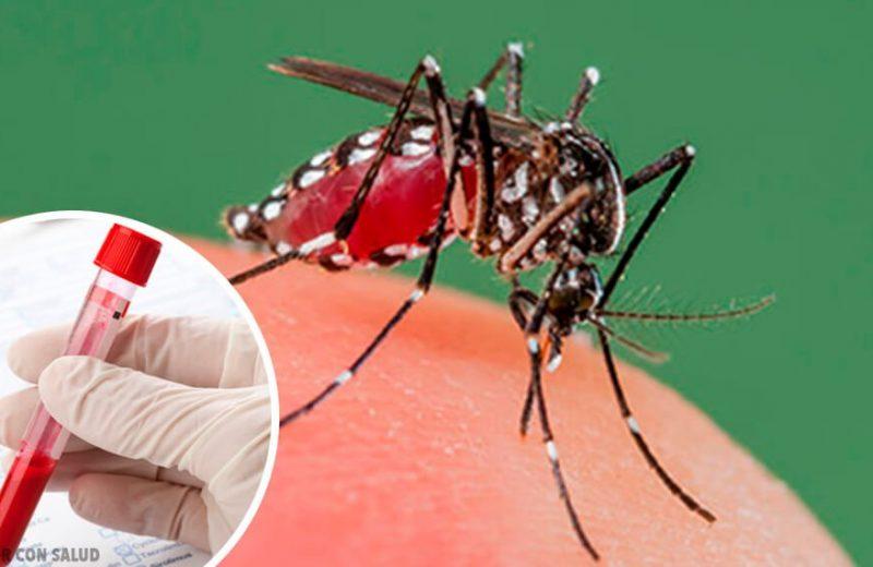 Dato de salud del dia: Dengue