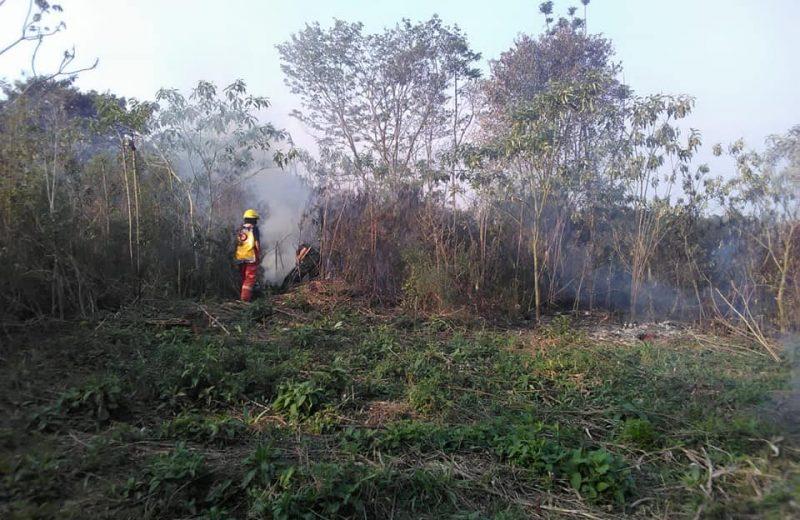 Pese a la prohibición continúan quemando pastizales para plantaciones