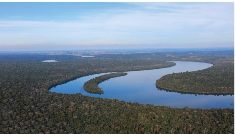 Proponen la creación de una Red Trinacional para la restauración de Bosque Atlantico de la región