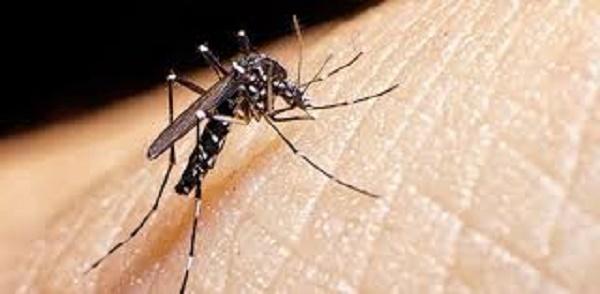 Nación confirmó que estudian dos casos sospechosos de dengue