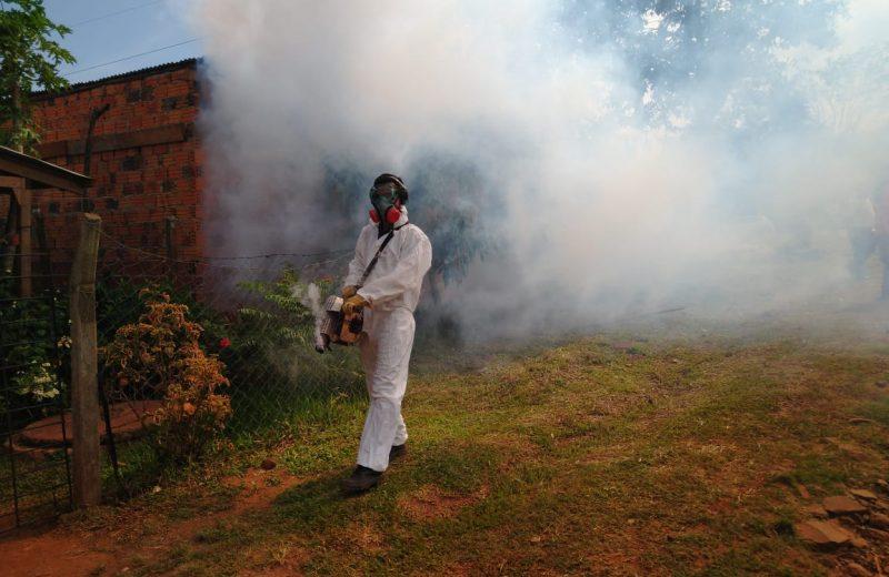 Nación confirmó 11 los casos de dengue