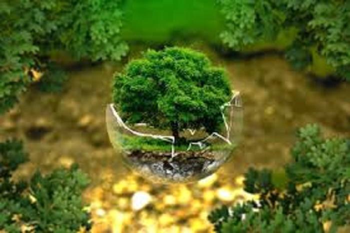 El planeta demuestra su resiliencia en un corto periodo de tiempo