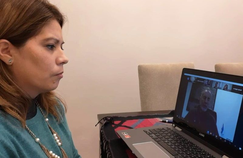 El foro virtual del NEA tuvo como tema central la situación de los varados en las fronteras