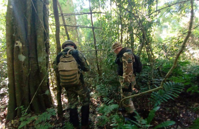 """Ecología: secuestraron """"saleros"""" puestos por cazadores furtivos"""