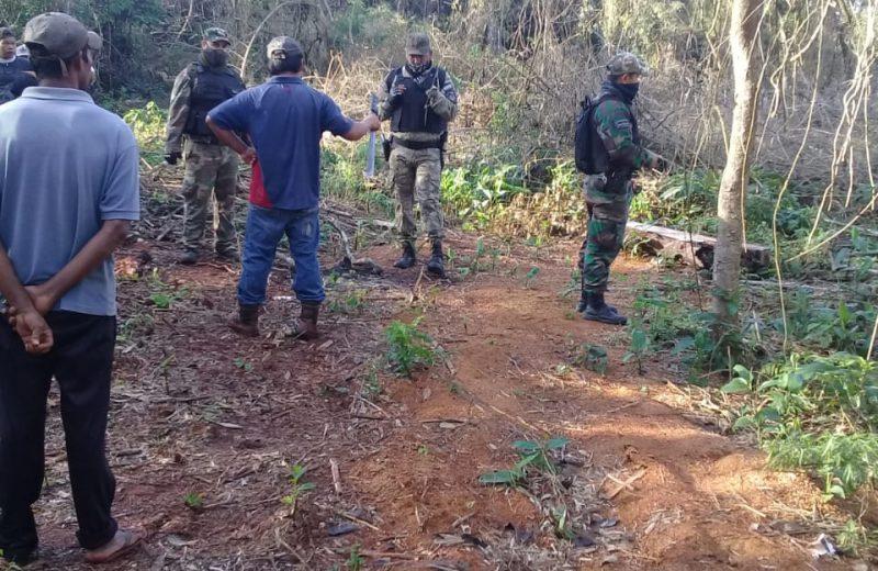 Iguazú: Conflicto entre comunidades guaraníes por el apeo ilegal