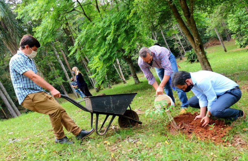 """Lanzaron el programa provincial """"Crece Selva Misionera"""""""