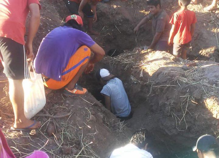 Vecinos de Iguazú desentierran pollos desechados tras un decomiso