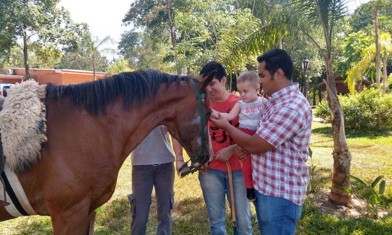 Falucho y Mora, caballos que sanan el cuerpo y el alma