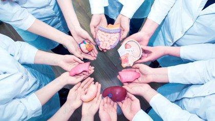 Misiones lidera la donación de órganos y tejidos en el país en el año del 25º Aniversario del CUCAIMIS