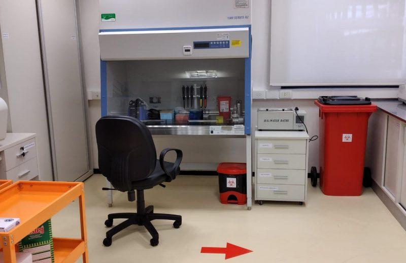 Covid-19: Ultiman detalles para el análisis PT-PCR en el IMiBio