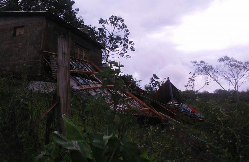 Arboles caídos y al menos una vivienda destruida por ráfagas de viento en Iguazú