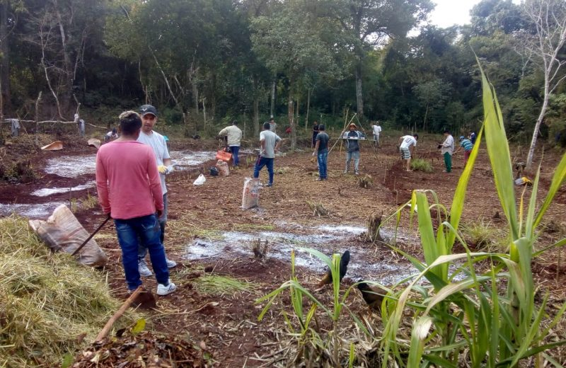 Integrantes de la comunidad Yryapú se capacitaron en agrofloresta