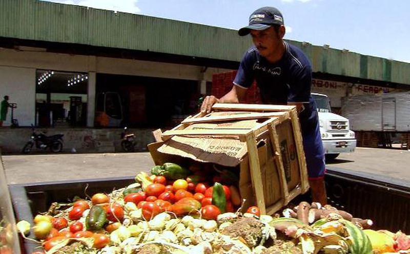 2.250 millones de toneladas de alimentos terminan en la basura cada año