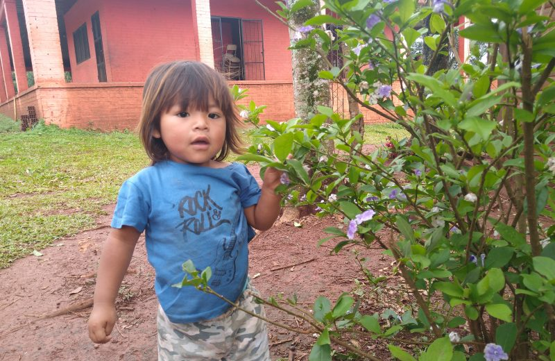 Comunidades Mbya guaraní de Iguazú celebraron el Ara Pyahú
