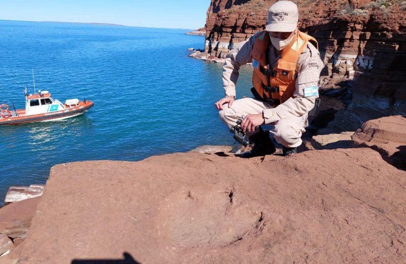 Prefectura encontró huellas de dinosaurio en la patagonia